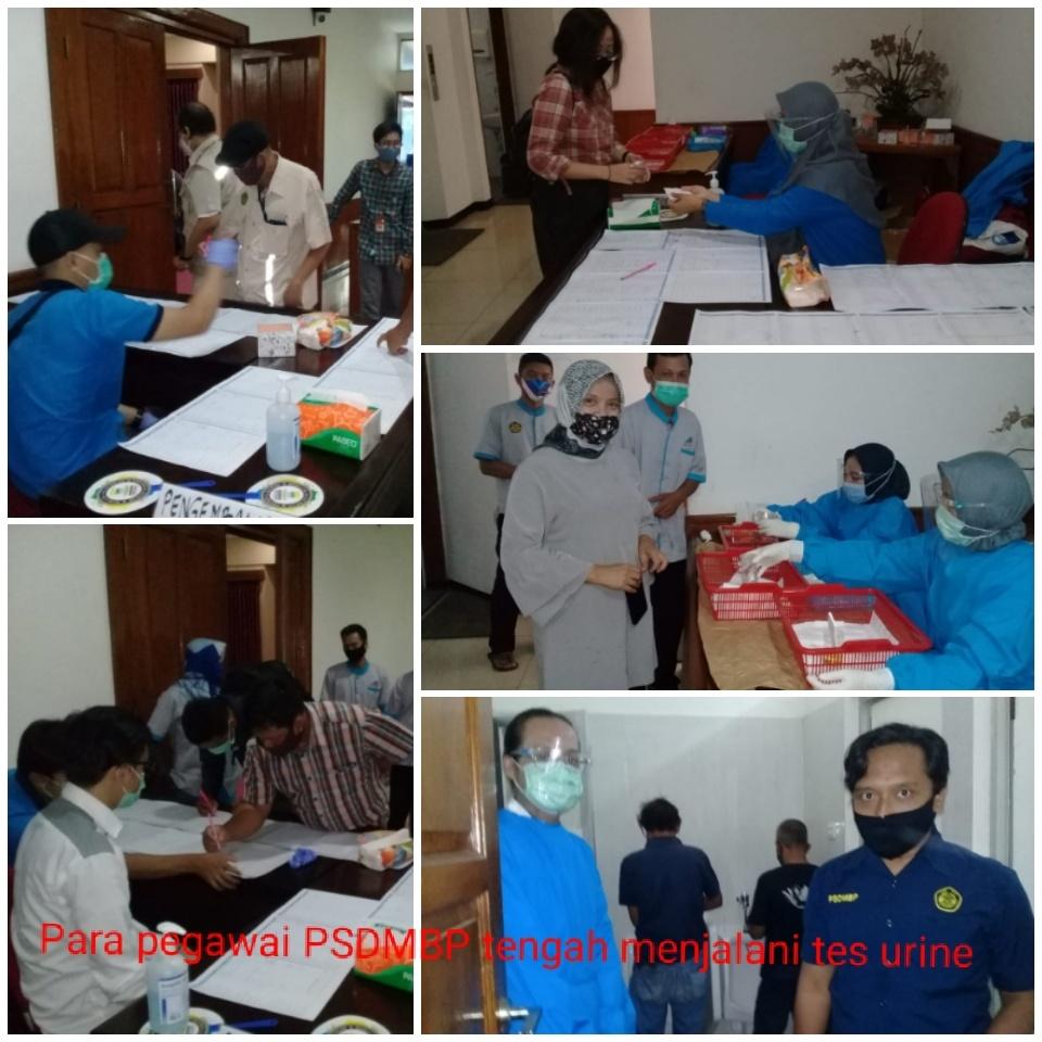 BNN pastikan pegawai PSDMBP bebas narkoba melalui tes urine